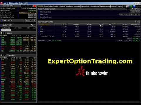 Best day trading options mentors